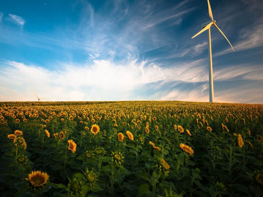 Green energy provider wind